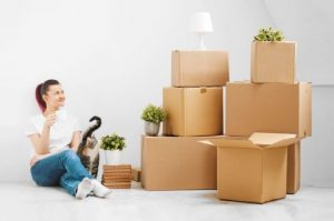 Interior Movers